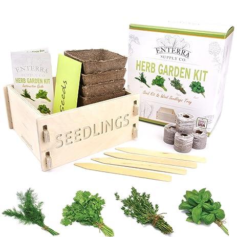 enterra supply herb garden seed starter kit u0026 wood seedlings planter grow herb seeds indoors