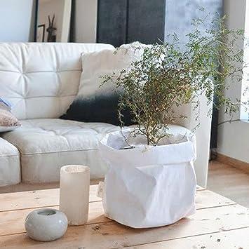 Zolimx Waschbar Kraft Paper Bag Pflanze Blumen Töpfe Multifunktions ...