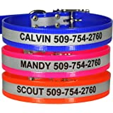 GoTags Reflective Waterproof Dog Collar - Personalized with Pet Name and Phone Number. 100% Waterproof and Durable.