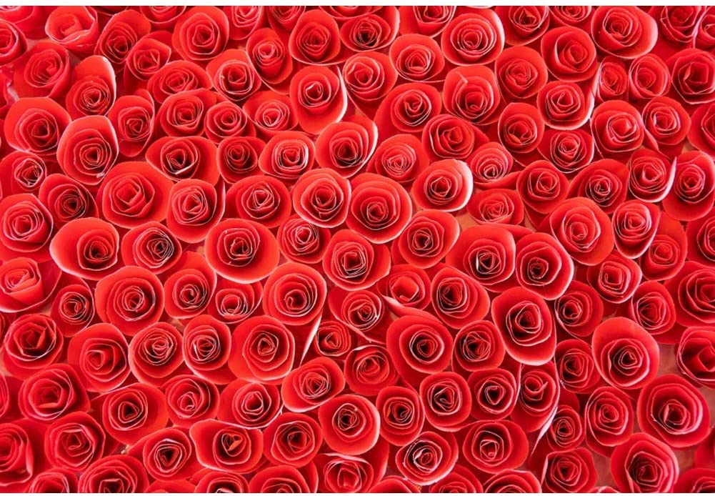 Red Roses Wall Background 8x6.5ft Wedding Ceremony Polyester Photography Backdrop Abstract Paper Art Blossom Flowers Wall Romantic Lover Baby Valentines Day Decor Portrait Shoot Poster Studio