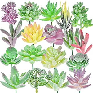 BUYGOO 18 Pack Artificial Succulent Plants, Mini Faux Succulent Plants, Unpotted Fake Succulent Plants Double Flocked Succulents Realistic Textured Aloe Cactus for Home Indoor Garden Decoration