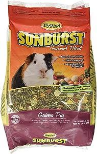 Higgins SUNBURST GOURMET BLEND Guinea Pig Food 3 lb. bag. Fast Delivery!!!