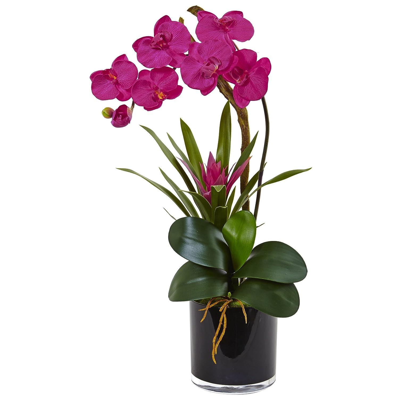 ほぼ自然Orchid and BromeliadシルクArrangement、美しい B073V9NRWT