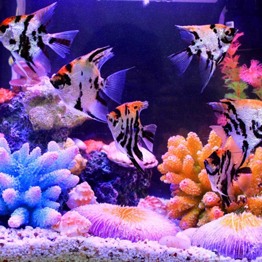 Colore : B ZA Artificiale Background Acquario Corallo Decorazioni Roccia Fish Tank Ornamento Coral Reef Aquarium Decoration