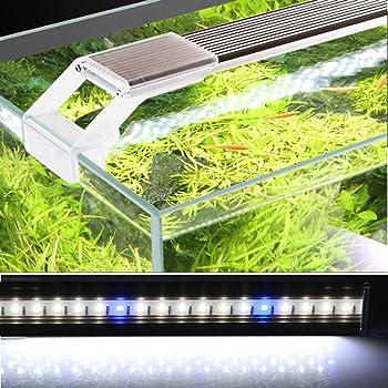Artificial-light-for-a-betta-aquariums