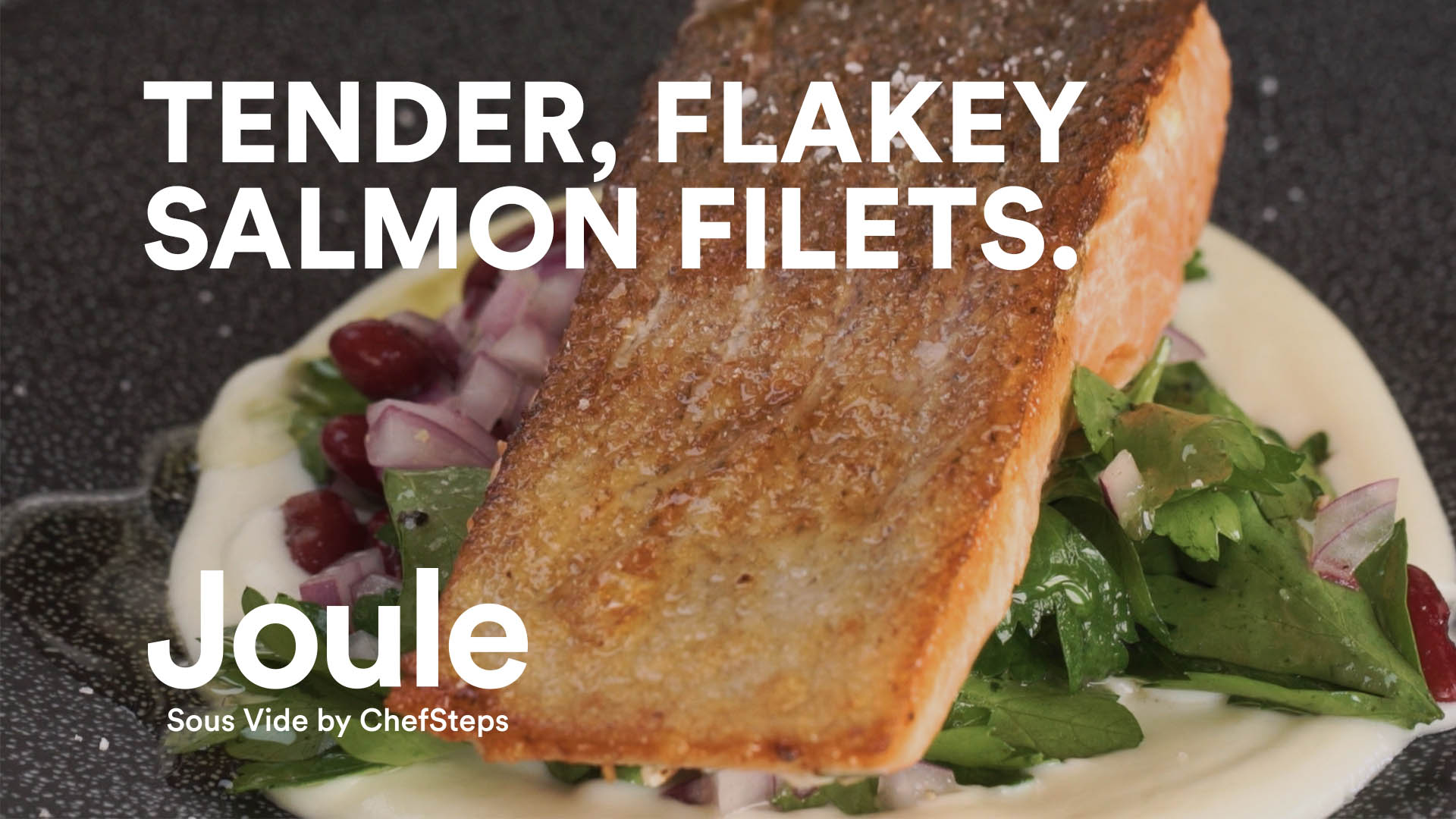 Amazon cooking joule tender flaky salmon filets forumfinder Choice Image