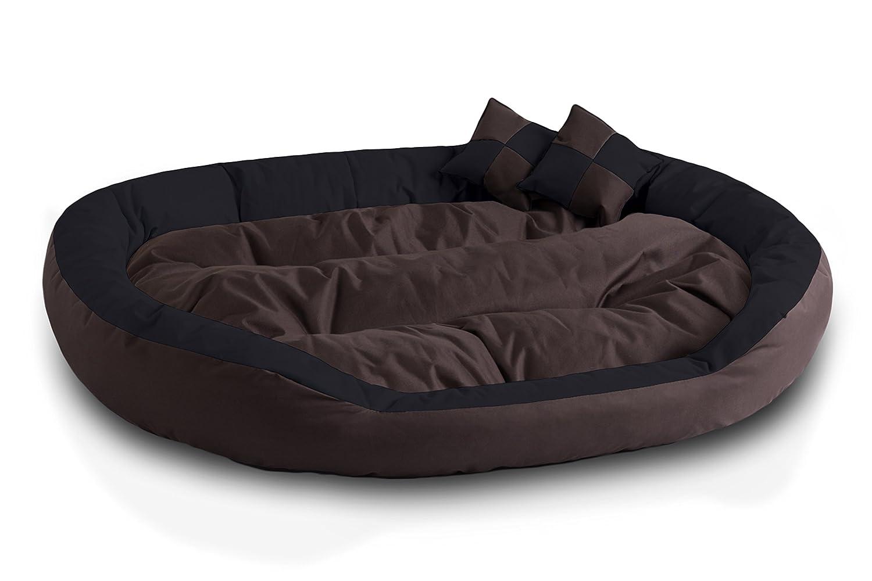 BedDog 4 en 1 SABA marron/negro XXXL aprox. 150x120cm colchón para perro, 7 colores, cama para perro, sofá para perro, cesta para perro: Amazon.es: Coche y ...
