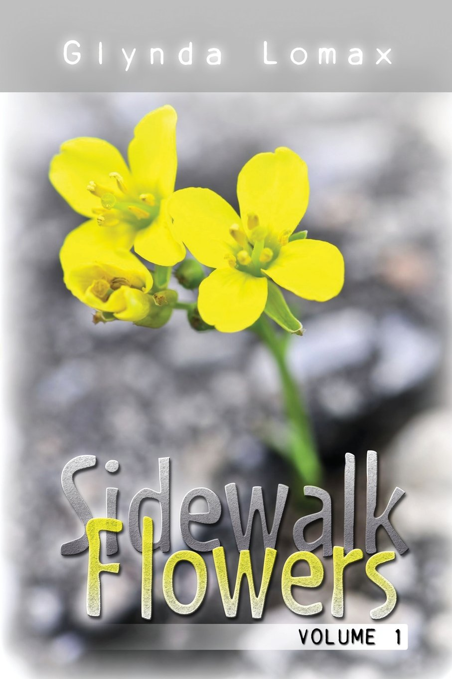 Download Sidewalk Flowers - Volume 1: Stories to Inspire, Motivate and Encourage PDF