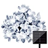 Amazon Price History for:LightsEtc 15.7 Feet 20 LED White Solar Blossom String Lights for Home, Holiday Decoration