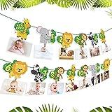 QIFU Animal 1st Birthday Baby Photo Banner - Newborn to 12 Month Bunting Garland Monthly Milestone Photo Banner for…
