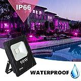 UV LED Black Light, RONSHE 50W UV LED Flood Light