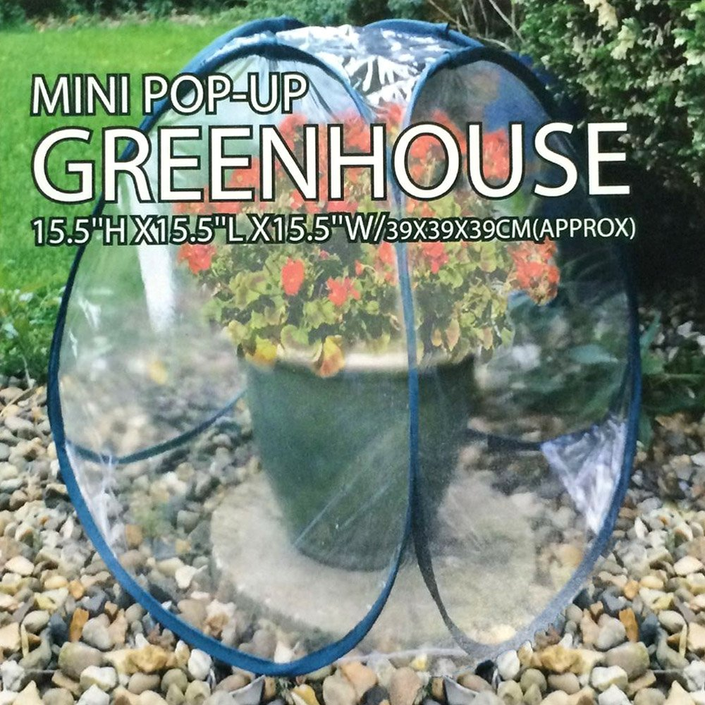 Mini Greenhouse Value Set -- Pack of 3 Small Pop-Up Greenhouse Plant Covers (Indoor, Outdoor) (3 Pack) by Wynnmart