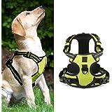 ALANSNOW 犬 ハーネス 犬用ハーネス 犬用胴輪 ソフト通気性 調節可能 首輪 反射ハーネス 安全&高級 小型犬 中型犬 大型犬 適用 各サイズ・色選べます (グリーン, XS)