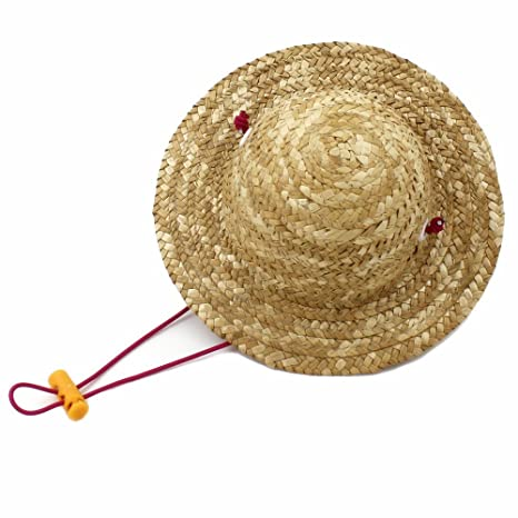 Amazon.com   Small Cute Handcrafted Woven Straw Pet Hat Costume Cat Little  Dog Toy Hat Novelty Cosplay Farmer Hat Adjustable String   Pet Supplies 9e8ea4bb77a9