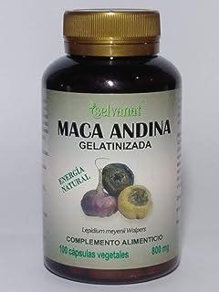 Maca Andina Gelatinizada. Máxima asimilación. Sin gluten No-OMG Orgánica y Vegana. Energía, Fertilidad y Salud Sexual para…