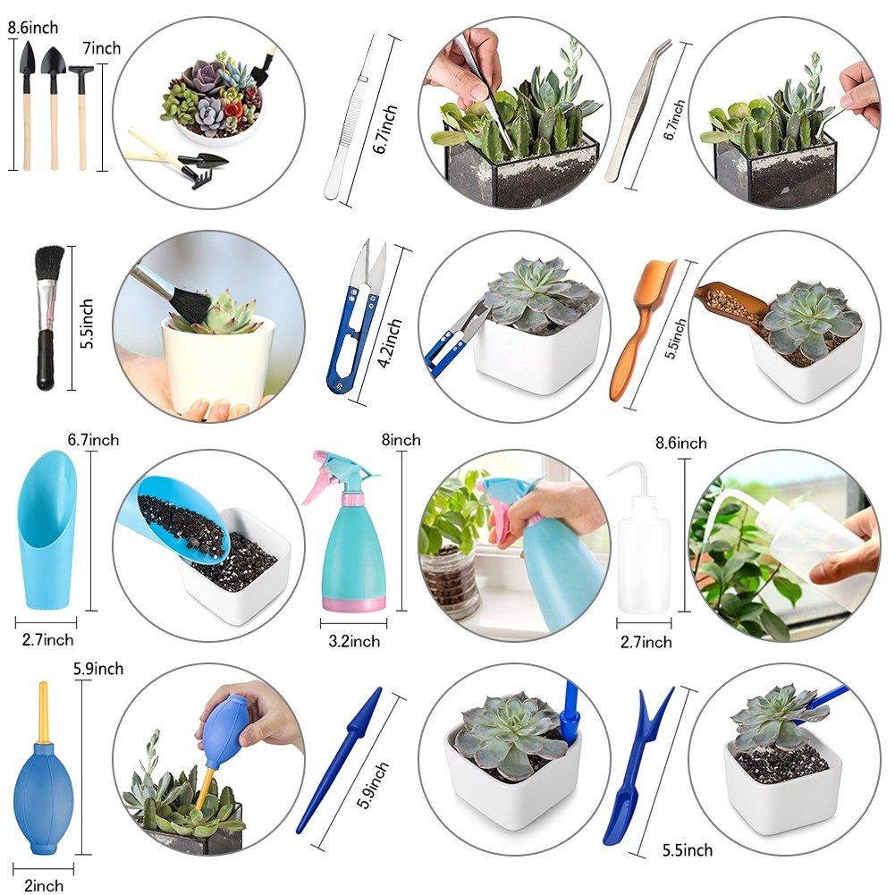 outils Mini jardin outils /à main Mini kit doutils de jardin F/é/érique Transplantation plantation jardinage Mini seau Pelle outils 14/pcs//Ensemble de plantes artificielles