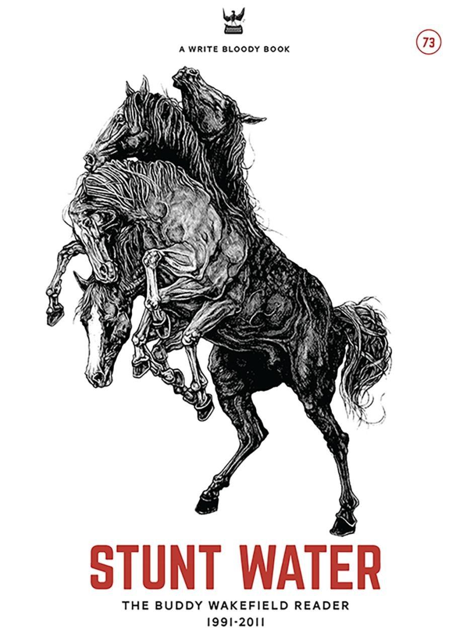 Stunt Water: The Buddy Wakefield Reader, 1991-2011 ebook