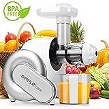 Extracteur de Jus, Pressoir Slow Juicer Electrique et Blender SimpleTaste Centrifugeuse pour Fruits et Légumes, Extraction à froid(Blanc)