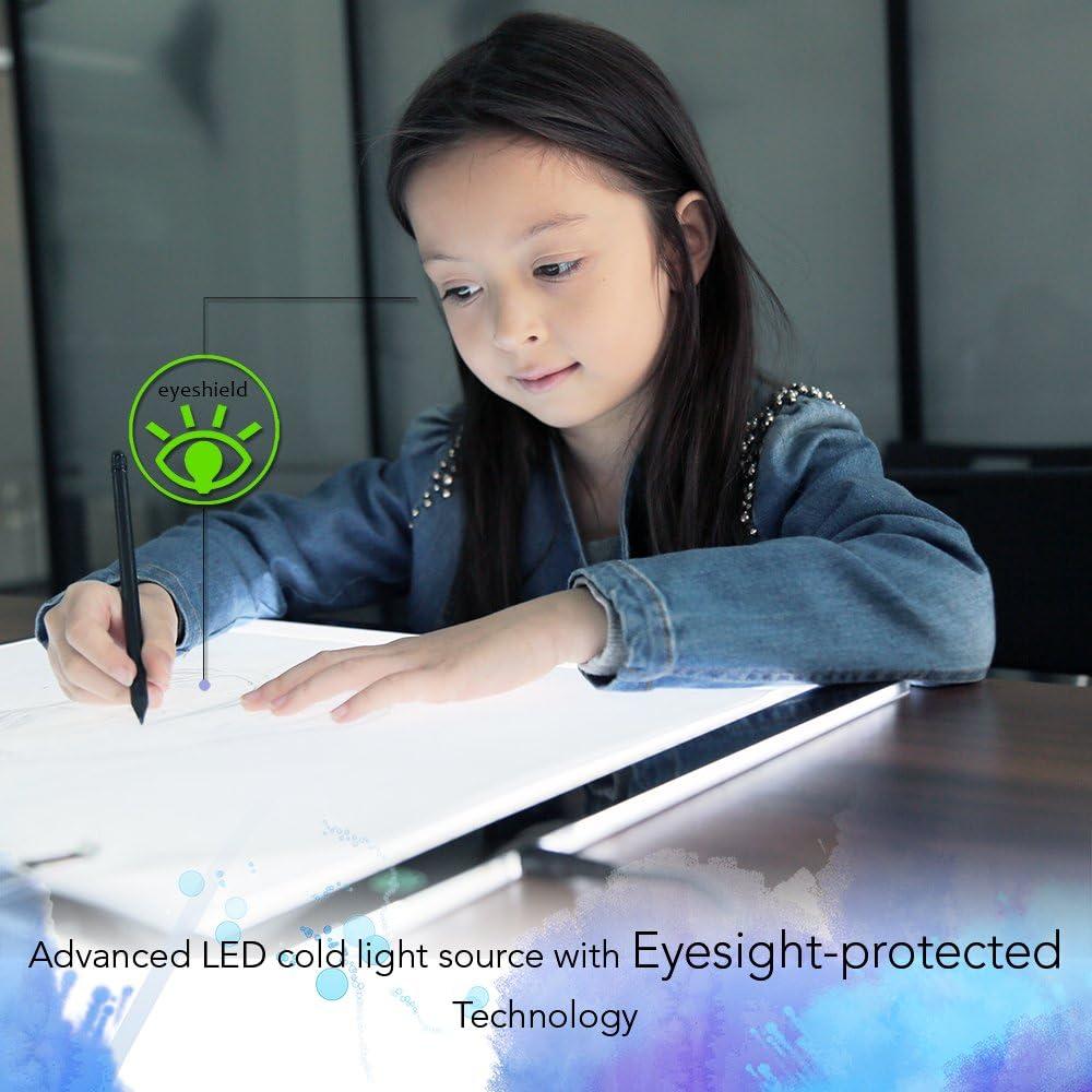 XP-Pen Caja de Luz (A3): Amazon.es: Hogar