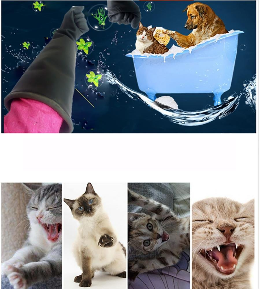 DAN DEFENCES Animal Handling Gloves, Scratch/Bite Resistant Gloves for Bathing, Grooming & Handling Cats, Small Dogs, Birds, Rodents & Other Small Animals, ...