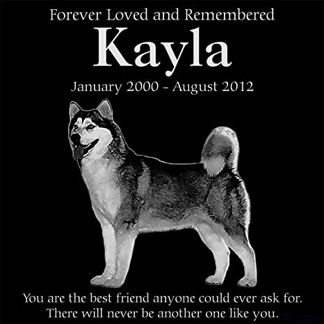 Lazzari Collections Personalized Alaskan Malamute Dog Pet Memorial 12 X12 Engraved Black Granite Grave Marker Head Stone Plaque Kay1