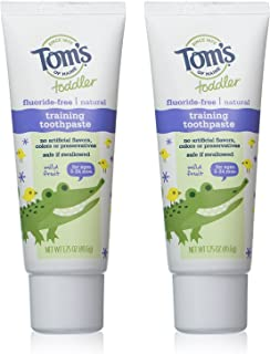 product image for Tom's of Maine Flouride Free Children's Toothpaste, Mild Fruit Flavor - 1.75 oz - 2 pk
