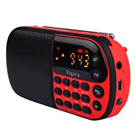 Pagaria L837BT Portable multimedia FM/Mp3 Player with Bluetooth Product Reviews