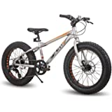 Hiland 20 Inch Kids Fat Tire Mountain Bike 7-Speed MTB Bicycle for Boys Girls