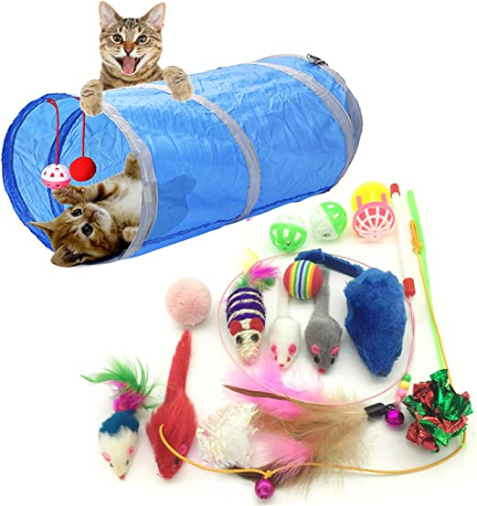 PietyPet Juguetes para Gatos, 15 Piezas Juguetes Gatos, Juguete Interactivo para Gatos Kitty: Amazon.es: Productos para mascotas