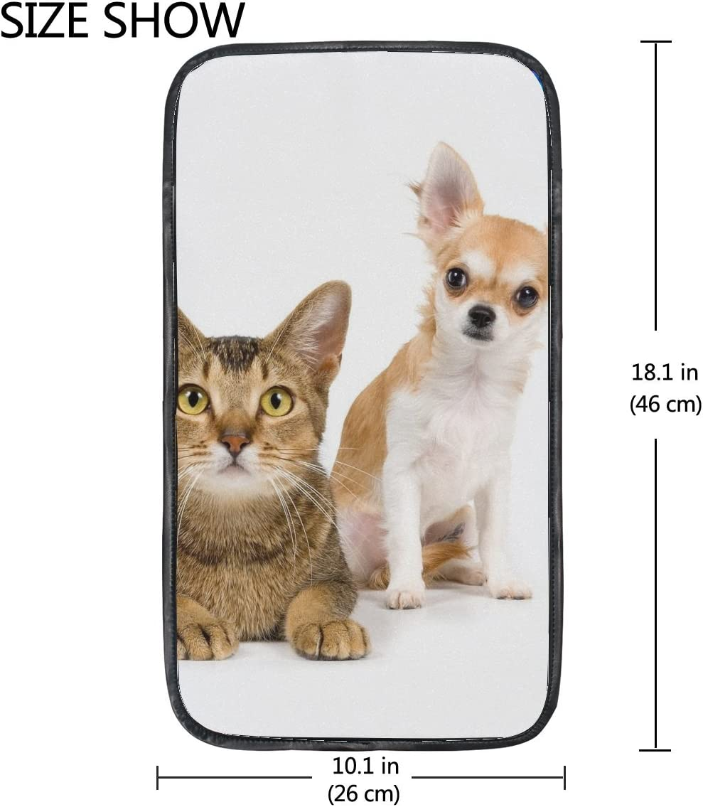 Cat Dog Friends Couple Photo Shoot 12 12.9 Inch Ipad Pro Laptop Tablet Protective Case Sleeve Cover Bag for Women Men Girls Boys Kids Birthday Gifts for Her Him