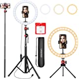 10.2 inch Selfie Ring Light with Tripod Stand & Phone Tripod Holder, UEGOGO 3 Modes LED Ringlight & Selfie Stick for Makeup/P