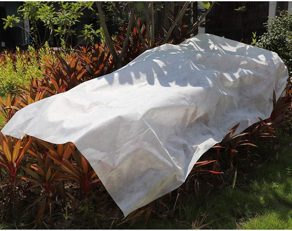 Blanc arbres plantes en pot fruits et cultures /æ/— Housse de protection anti-gel pour plantes dhiver de qualit/é sup/érieure 2 x 6,1 m Moustiquaire standard pour l/égumes