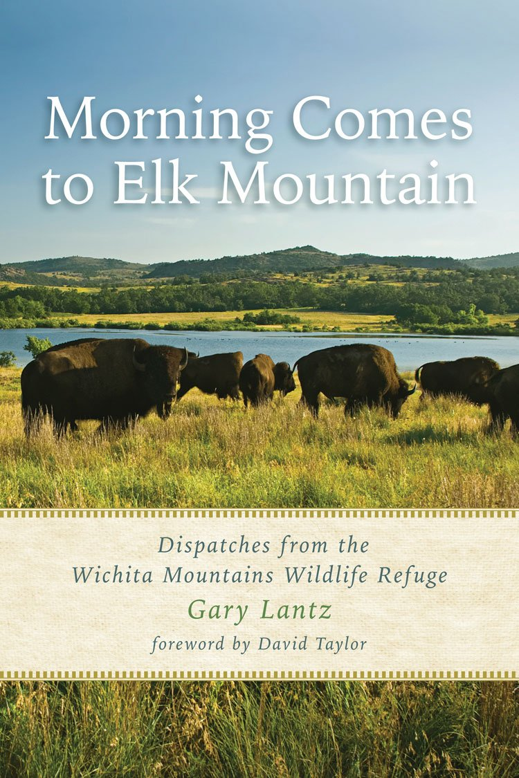 Download Morning Comes to Elk Mountain: Dispatches from the Wichita Mountains Wildlife Refuge (Southwestern Nature Writing Series) ebook