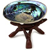Ocean Shell Studios 5 - 6 inches Premium Natural Abalone (Pāua) Shell with Wooden Stand for Smudging, Cleansing Home, Meditat