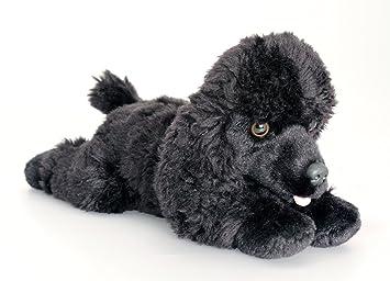 74ae22485b5 Keel Toys Cuddly Plush 35cm Black Poodle Dog Soft Toy - Frankie ...