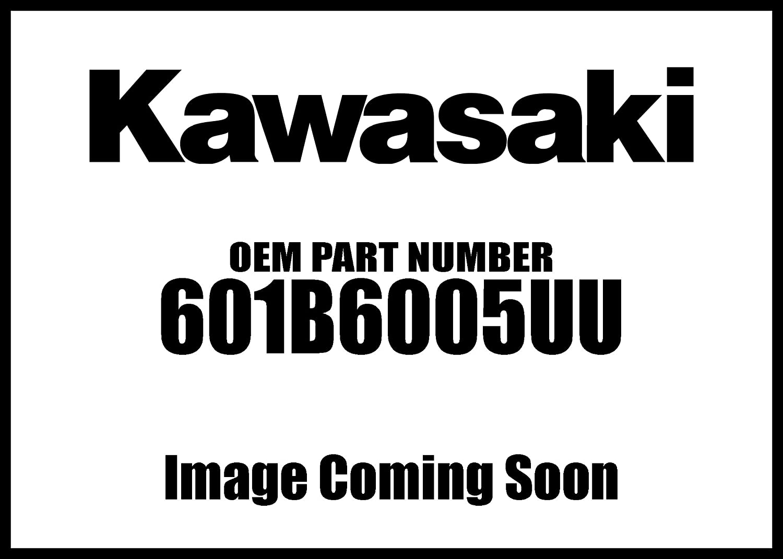 Kawasaki 1991-2018 Concours 14 Zzr1200 Ball #6005Uu Bearing 601B6005uu New Oem