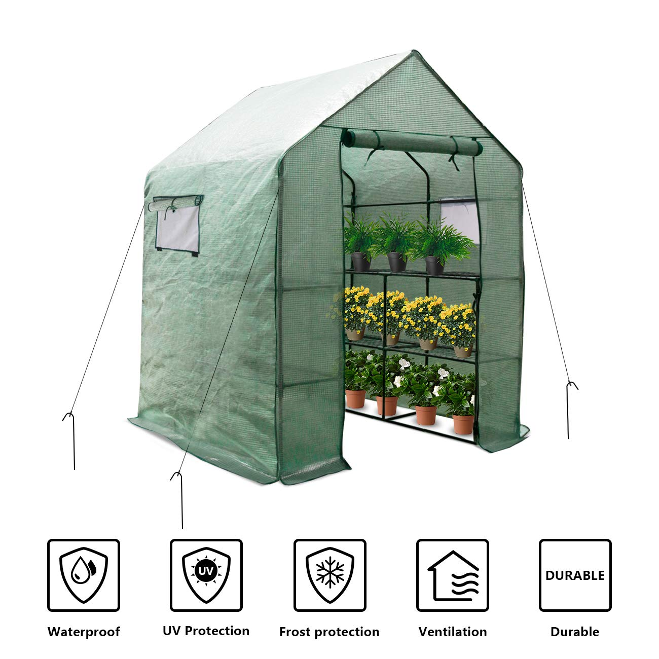 LINLUX Large Portable Walk-in Plant Greenhouse with PE Cover, 2 Tiers 8 Shelves Waterproof Gardening Steeple Greenhouse, Window Version and Roll-Up Zipper Door (56'' W x 56'' D x 77'' H Inch) by LINLUX (Image #1)