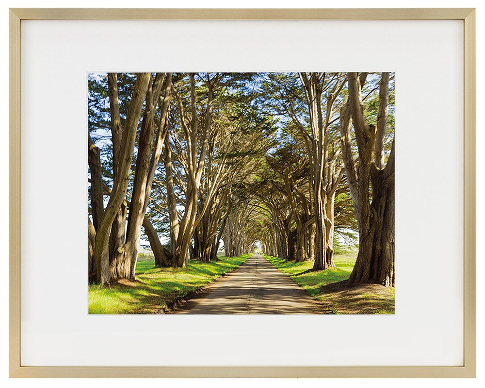 Golden State Art 11x14 Picture Frame - Gold Aluminum (Shiny Brushed) - Fit Photo 8x10 with Ivory Mat or 11x14 Without Mat - Metal Frame Wall Mounting - Real Glass (11x14, Gold)