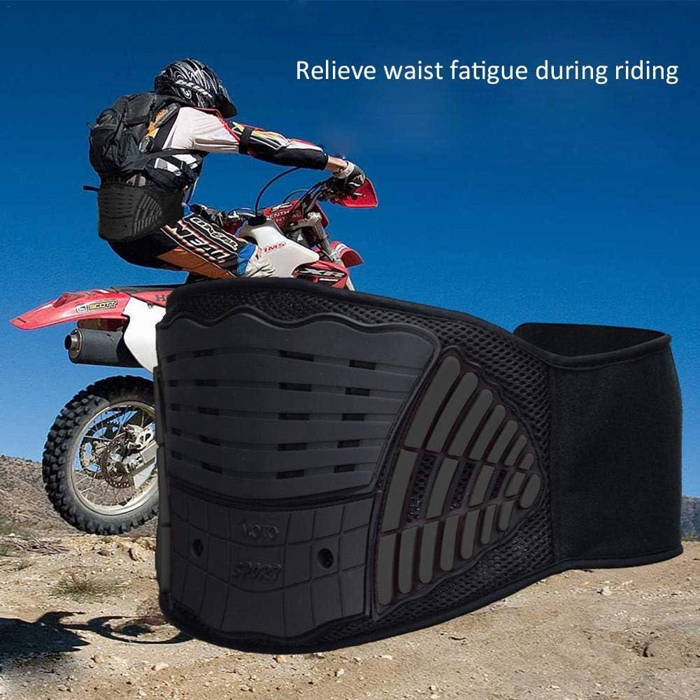 Locomotora Anti-ca/ída para Protector Cintura Ri/ñ/ón Bicicletas Todoterreno Cintur/ón de ri/ñon para Hombre o Mujer Gorgebuy Cintur/ón Protecci/ón de Moto