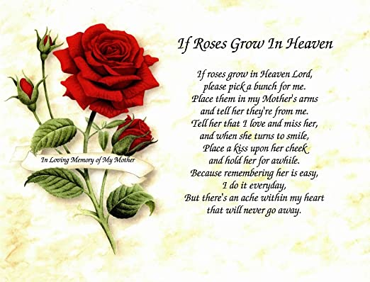 In Memory Of Mother If Roses Grow In Heaven Memorial Poem For Loss Of Mom With Red Rose