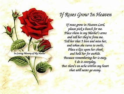 Amazon In Memory Of Mother If Roses Grow In Heaven Memorial