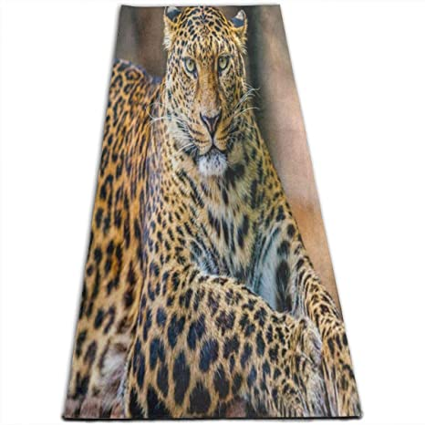 Amazon.com: Hipster Leopard Animal Print Yoga Mat-All ...