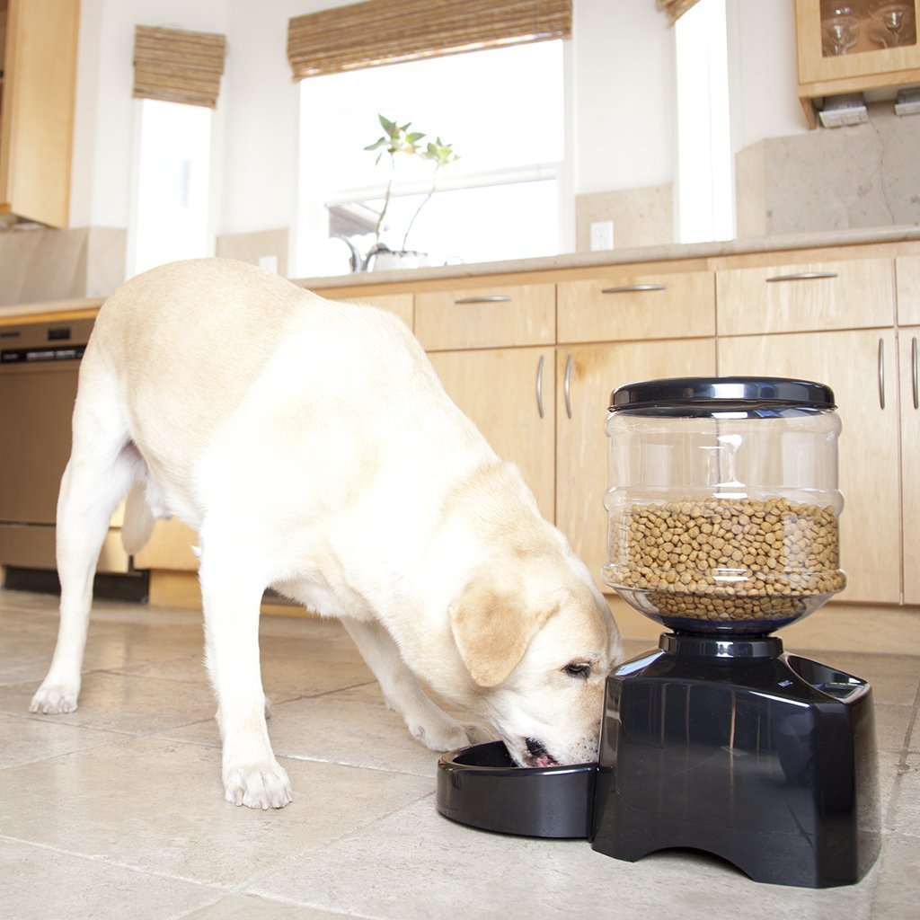 topPets PF-19A Automatic Pet Feeder Perfect Dinner Pet Feeder for Dog and Cat with Portion Control w/ LCD display by topPets