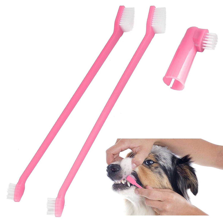 717pYbs51bL._SL1500_ Brushing your dog's teeth