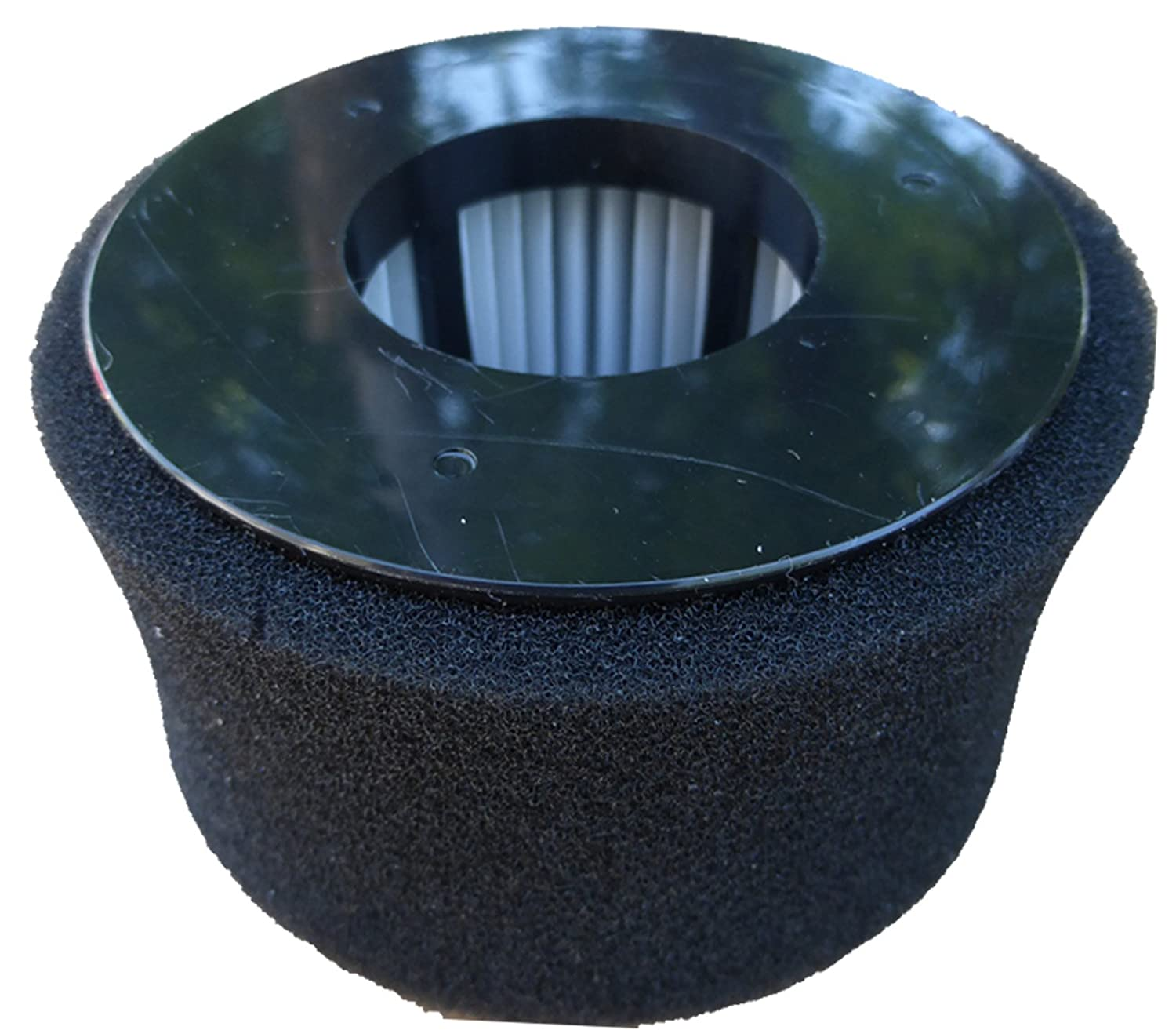 Bissell Model 81L2,81L2T Power Edge Broom Vacuum Cleaner Filter Generic Part #F606,54A2