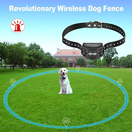 GPS Invisible Fence Dog Collar Getting Guide & Suggestions