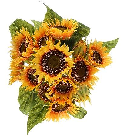 Matrimonio Fiori Girasole : Pz lotto africano crisantemo fiore falso girasole dasiy fiore