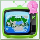 Arabic TV Pro 350 Channels