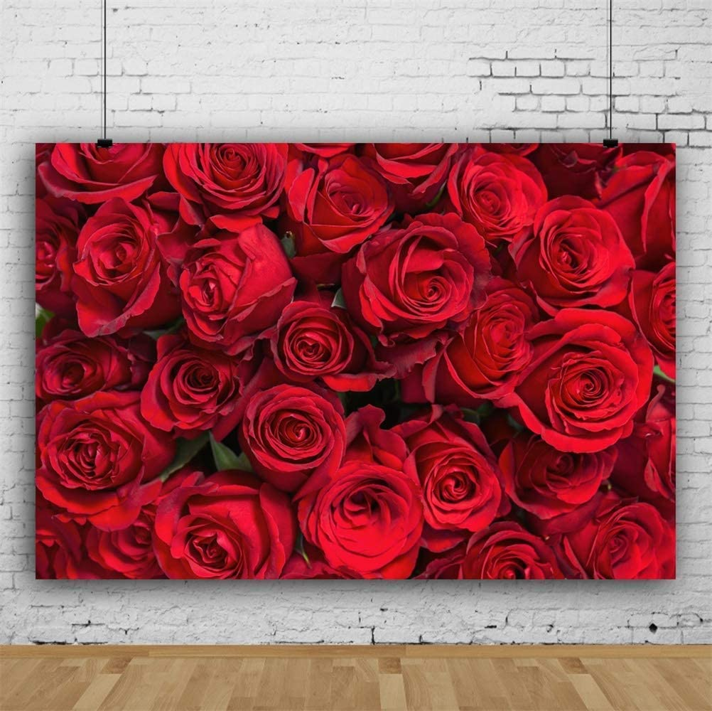 8x6.5ft Romantic Blooming Red Rose Flowers Vinyl Photography Background Graceful Floral Wedding Stage Backdrop Valentines Day Banner Bridal Shower Indoor Decors Wallpaper Studio