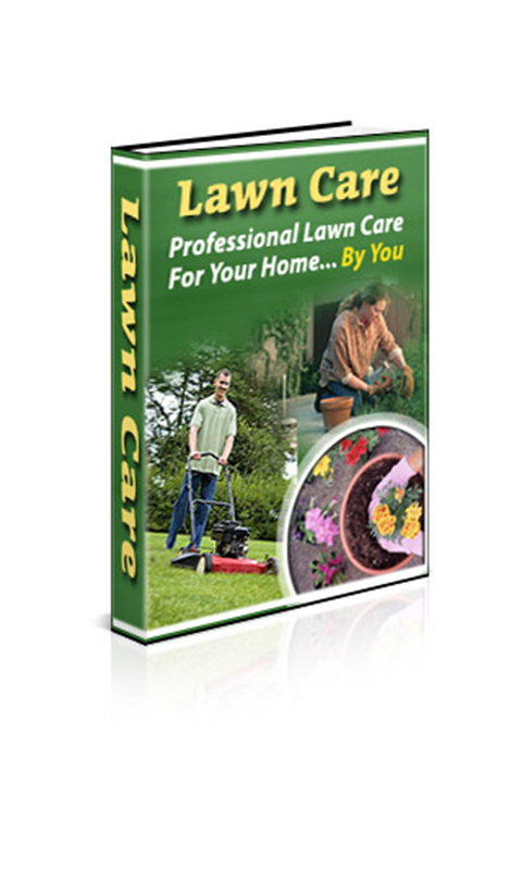 lawn care professional lawn care for your